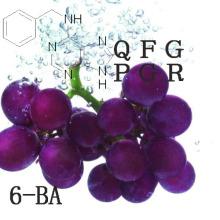 Promoteurs de croissance des plantes 6-Benzylaminopurine (6-BA)