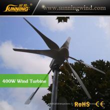 Utilisation résidentielle de la petite éolienne résidentielle 400W de générateur de vent