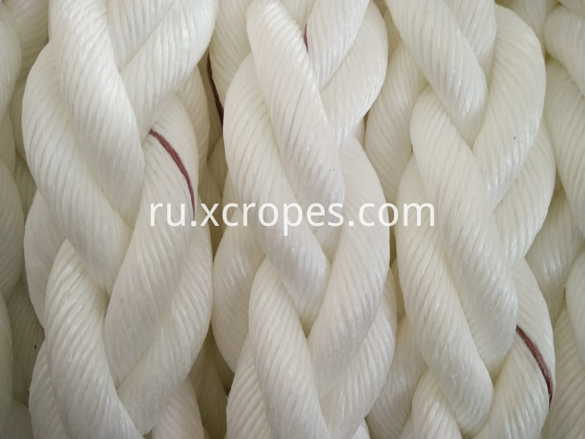 8 Strands PP Rope