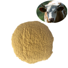 Harina de gluten de maíz 60% / 70% Grado de alimentación Aditivos para piensos Productos químicos veterinarios