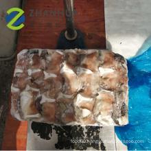 Frozen Giant Squid Neck Gigas Pota Squid For Sale