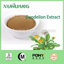 Manufacturer Supply Natural Dandelion Root Extract