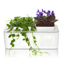 Hydroponics System Kit, Fashionable Household Goods