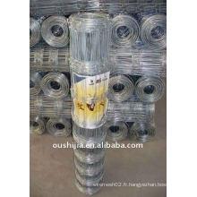 Mesh galvanisé de clôture de terrain (usine)
