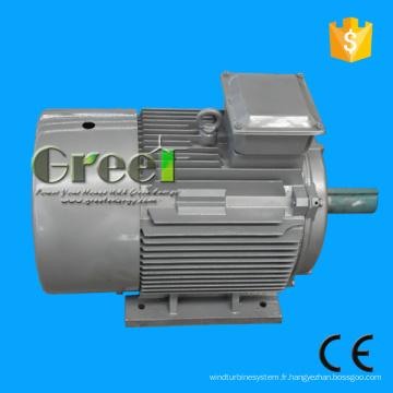 Aimant tournant de générateur électrique de 50kw bas permanent
