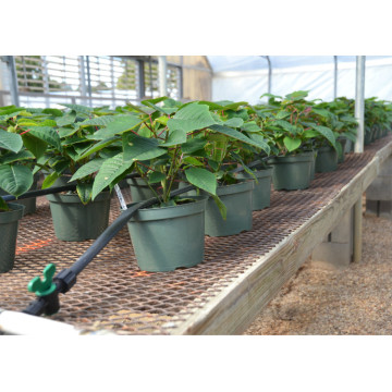 Green-Drip Tape-Irrigation for Agriculture