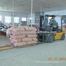 Nouvelle récolte d'ail en provenance de Chine