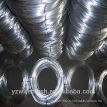 Fabricant de fils galvanisés à prix doux et compétitifs