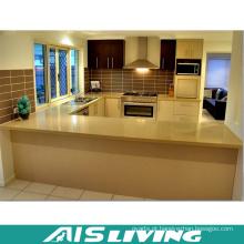 Armário de cozinha pequeno com alça para projeto (AIS-K400)