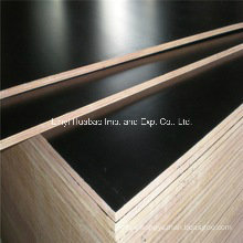 Poplar Core Brown Film Faced Shuttering Plywood for Formwork