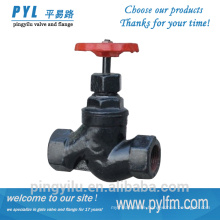 Thread connection grey iron globe control valve steam globe valve price
