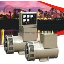Permanenter magnetischer bürstenloser Dieselgenerator (TFW)