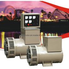 Générateur diesel permanent sans brosse magnétique (TFW)