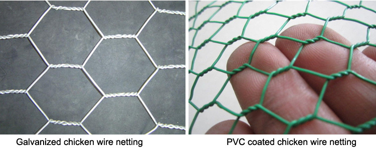 Hexagonal Poultry Netting Wire