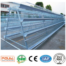 China Factory Quality a Type Layer Poultry Cages