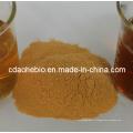Poudre de levure alimentaire (Protéines brutes 40% ~ 55%)
