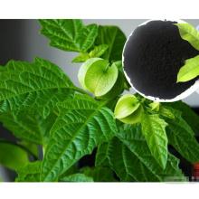 Esgotos orgânicos para alimentos saudáveis com extrato de algas marinhas