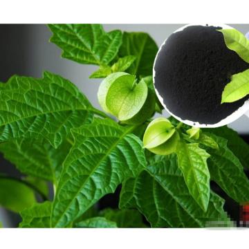Bio-Dünger für Gesundheit Lebensmittel mit Algen-Extrakt