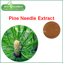 Wholesale Price for Berberine, Rutin, Ginseng leaf p.e. ,Green Tea P.e.,plant extract for Sale Natural Antioxidant Pine Needle Extract supply to Malaysia Manufacturers