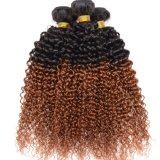 Two Tone Ombre 1B/30 Kinky Curl Malaysian Hair Kinky Twists Hair Weave