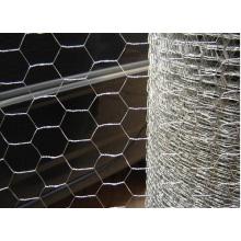 Inversión Twist Hexagonal Alambre Integración Comercial