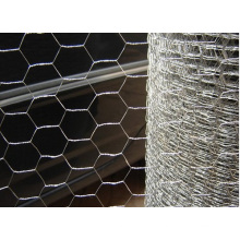 Reverse Twist Hexagonal Wire Netting Trade Integration