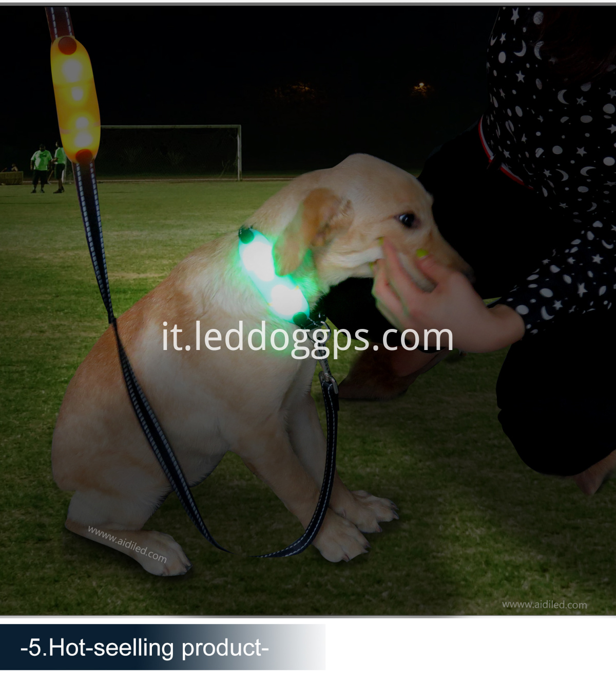 Led Luminous Night Safety Dog Collar