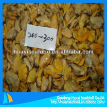 seafood frozen mussel meat for sale