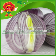 2015 fresh red onion direct from Chinese manuafactuer