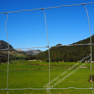 100/8/15 Hinge Joint Field Fence for Grassland