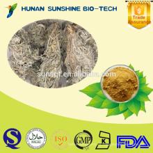 Venta caliente Artemisia capillaris PE polvo 10: 1 extracto de Artemisia capillaris