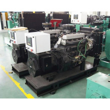 OEM 12Kw Diesel Generator with Yangdong Engine