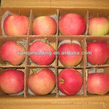 pomme de Shandong