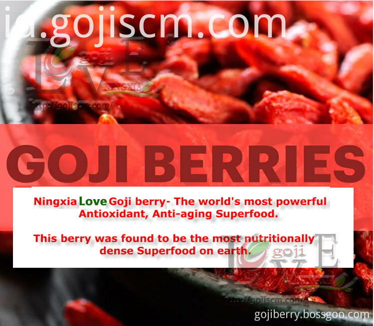 GOJI BERRY Anti-inflammatory advantages