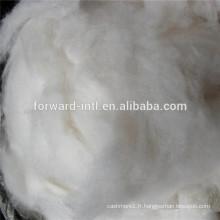 fibre de cachemire épilée, fibre de cachemire blanche, pure fibre de cachemire