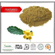 Pure Damiana Extract powder, Damiana Leaf P.E. for sexual health