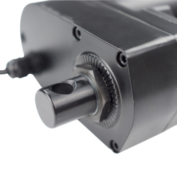 Electric Linear Actuator of Heavy Duty