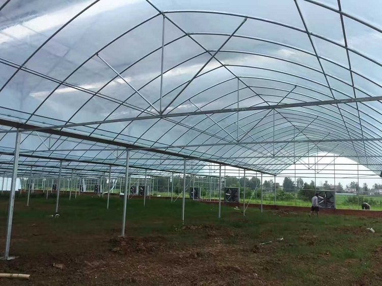 Sk Multi Span Film Greenhouse Frame