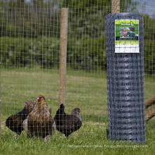 Cattle Fence/ Chicken Wire Fence/ Agriculture Fence
