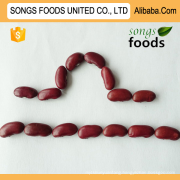 Agricultural Crops Dark Red Kidney Beans