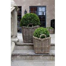 RAPL-020 Decoração de jardim mais recente Design Poly Garden Rattan de alta qualidade - Cerâmica