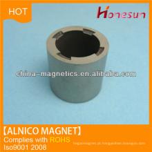 Alnico pequeno círculo magnético para Industrial
