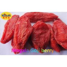Ningxia nativo orgânico seco Goji Berry