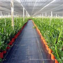 Tela tecida tratada UV da tampa de planta de jardim PP