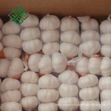 2018 china hot sale fresh pure white garlic price
