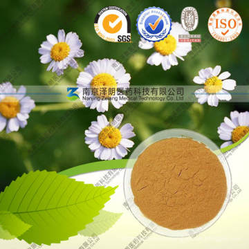 Natural Chamomile Extract 10: 1