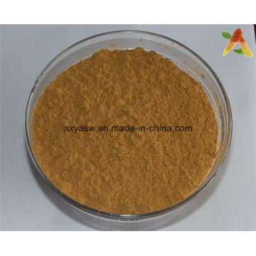 Qualität CAS Nr. 3351-86-8 Natürliches Fucoxanthin