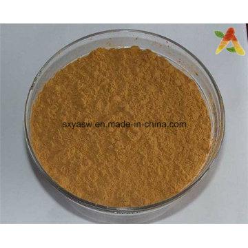 Природные 6: 1 Chuanxiong Rhizoma Extract