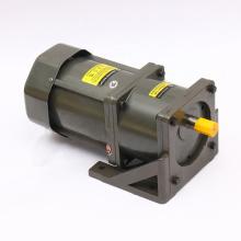 110V 220V Speed controller AC Gear Motor