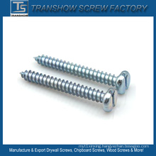 DIN7971 Slotted Pan Head Self Tapping Screws